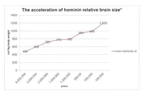 brain size chart_4.jpg