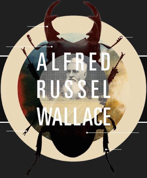 alfred-wallace.jpg