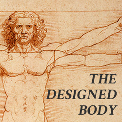 the-designed-body4.jpg